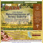 California Brain Injury Association: Napa 2010